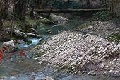 river Agura near Sochi, Krasnodar krai