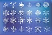 Snow Icon2014