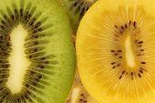 Kiwi Variety
