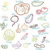 doodle vegetables set
