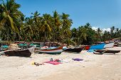 Palolem Beach, South Goa, India