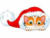 Cute red kitten sits in Santa Hat. Raster version
