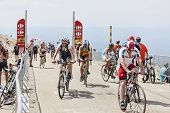 Amateur Cyclists On Mount Ventoux