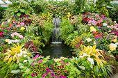 Flower Display At Butchart Gardens