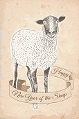 Hand drawn sheep