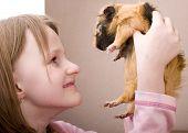 Little Girl Holding Guinea Pig