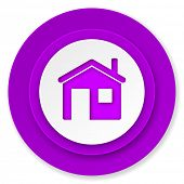 house icon, violet button, home sign