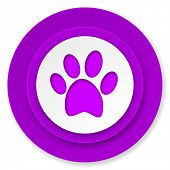foot icon, violet button