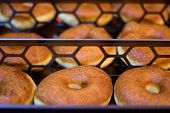 stock photo of puffy  - many fresh baked brown puffy tasty donuts - JPG