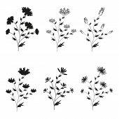 stock photo of six-petaled  - A set of six black hand - JPG