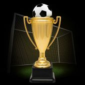 stock photo of soffit  - Winner cup with football on football pitch on nature background with soffits - JPG