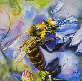 stock photo of lobelia  - Close up of honey bee on lobelia flower watercolors painted - JPG