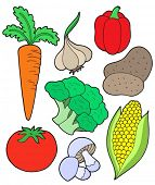 Vegetable collection on white background - vector illustration.