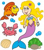 Mermaid collection on white background - vector illustration.
