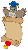 Flying owl lector with parchment - vector illustration.