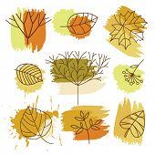 set autumnal leaves