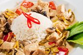 Thai Dishes - WOK Chicken with Mushrooms and Rice