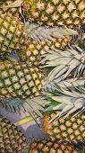 Fruits Ananas On A Shelf At The Market For Sale Usable For Background poster