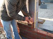 Laying Half Brick