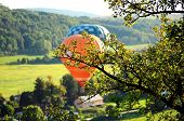 Balloons over the green fields