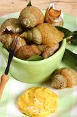 stock photo of whelk  - Whelks  - JPG