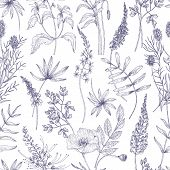 Natural Seamless Pattern With Wild Blooming Flowers And Flowering Herbs Drawn With Contour Lines On  poster