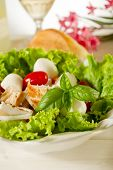 salad with chicken mozzarella and tomatoes
