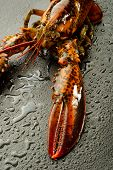 raw lobster over black stone