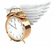 stock photo of time flies  - A Vintage brass alarm clock with feathered wings and bells on top - JPG