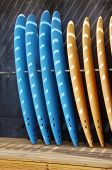Several blue and yellow surf boards standing against a gray wall