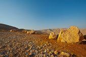 Desierto de piedra