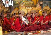 Buddhist monks and lamas, Nepal