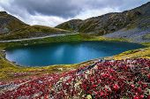 pic of hatcher  - Cloudy day at Summit Lake decorated with red plants - JPG