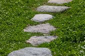 stock photo of cobblestone  - Granite stone pathway on green grass in the park - JPG