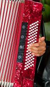 Closeup Detail Of Hands Playing A Red Accordion Instrument