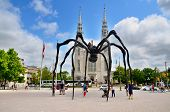 The Notre-Dame Cathedral Basilica and Maman is a sculpture