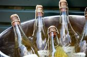 foto of liquor bottle  - Several unopened bottles of champagne cooling in a large ice bucket at a catered event closeup view - JPG