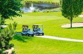 foto of buggy  - Golf carts on a golf course - JPG