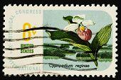 Flowers 1969