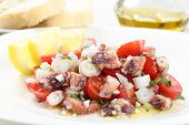 healthy octopus salad- traditional dish from Portugal-Santa Luzia, Algarve