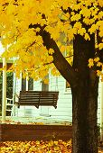 Porch Swing in Autumn