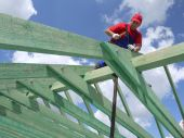 picture of purlin  - Carpenter driving a nail into house rafter framing beam - JPG
