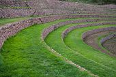 Terraces At Moray, Sacred Valley, Peru