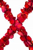 stock photo of x-rated  - Red dried rose petals formed into a cross - JPG