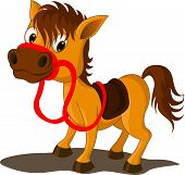 picture of baby cowboy  - Cute smile Baby Horse Cartoon with rope horse - JPG