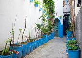 Narrow Street With Houseplants In Old Medina. Tangier, Morocco