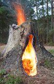 Hot Plume