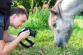 stock photo of workhorses  - Photographer at work take a picture of horse - JPG