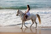side view of young woman horse ride on beach in the morning