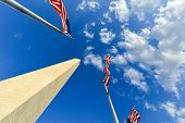 US flags encircling  Washington Monument - Washington D.C. United States